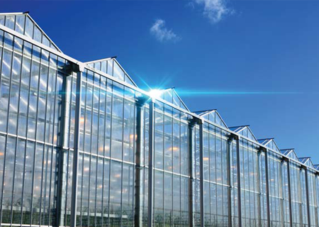 Cultivation Facilities